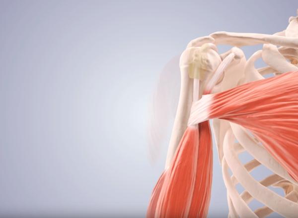 Chirurgie de l'épaule – Keyhole par le Dr jean KANY